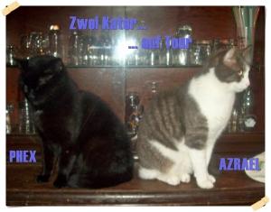 Phex und Azrael