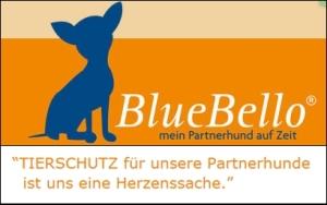 BlueBello2
