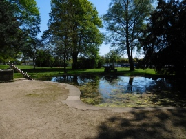 Stadtgarten (5)